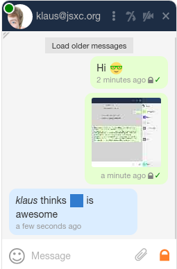 Screenshot chat window